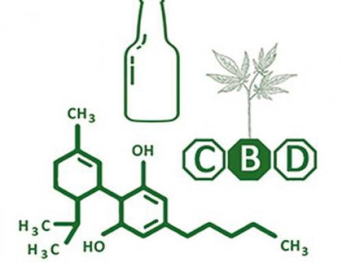 Cannabis, alcool: on en parle?